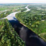 Ландшафтный заказник «Ольманские болота»