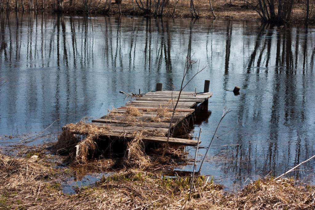 озеро отдых в Беларуси lake holidays in Belarus болото