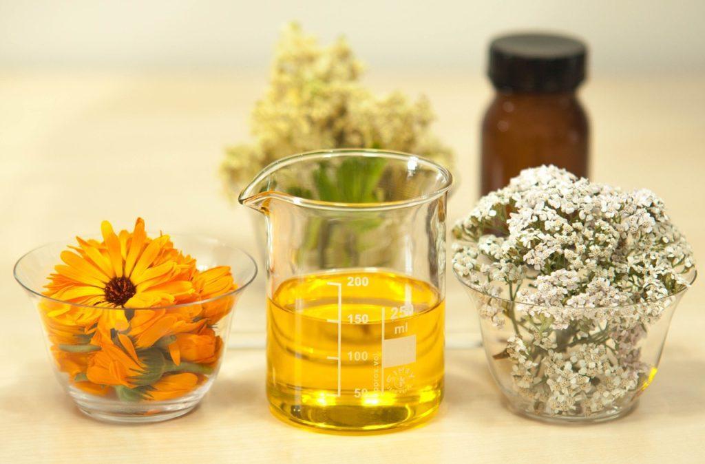 лекарственные растения2