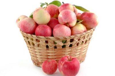 фрукты топ-19 статья