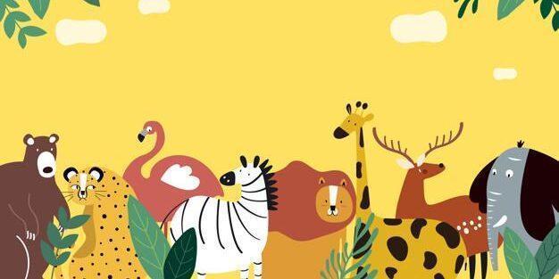 детский лагерь и зоопарк